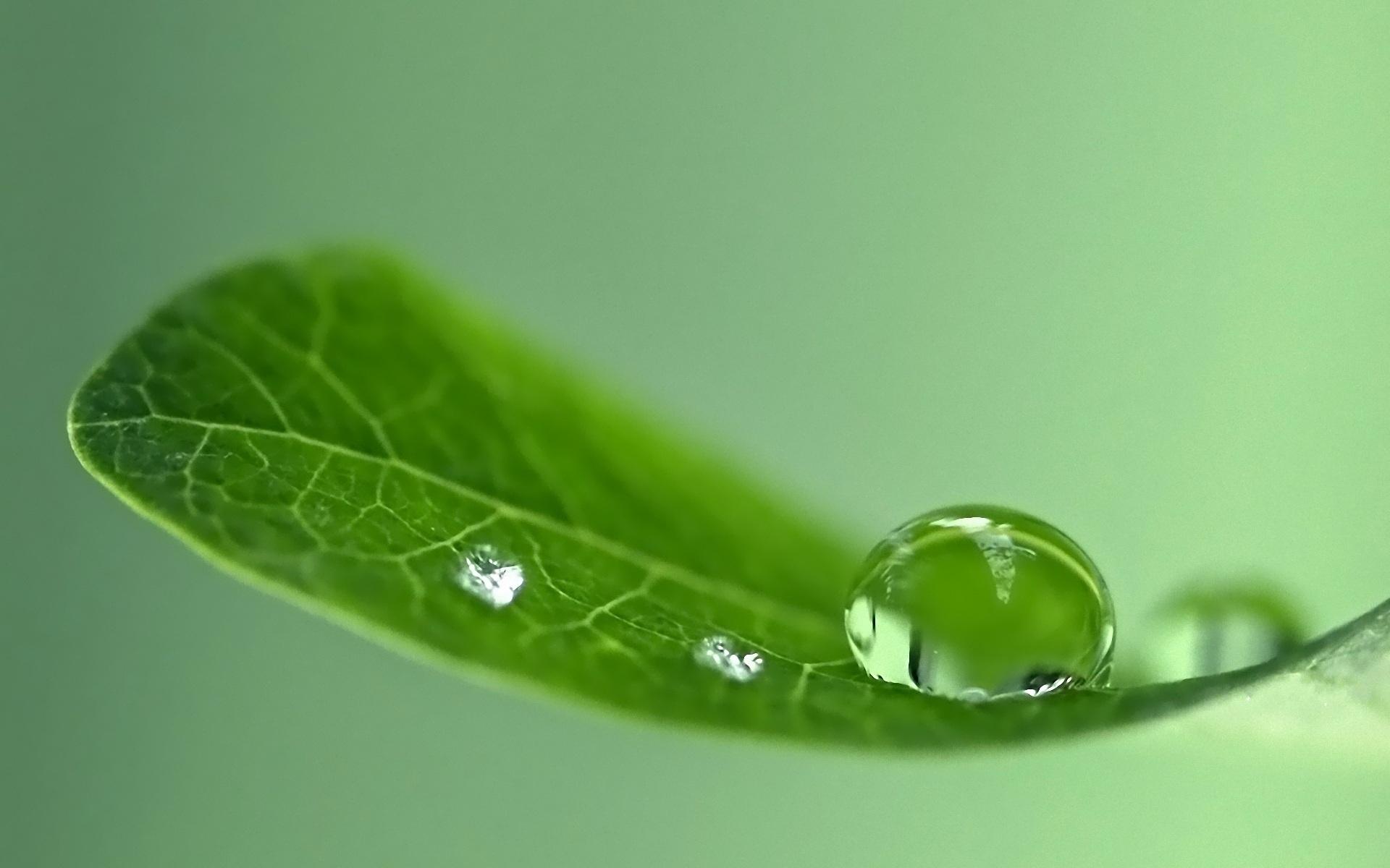 7028297-natural-water-drops